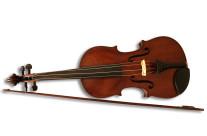 La Viola di Carlo Innocenzi